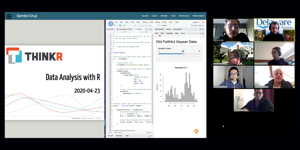 Screenshot of remote learning session with R and videoconference